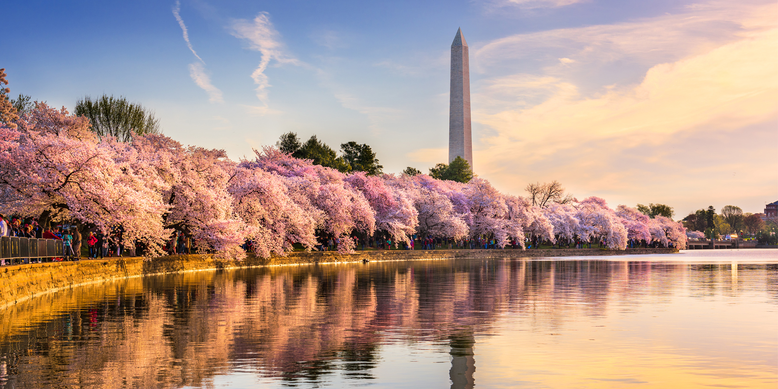 Flights to DC from $69