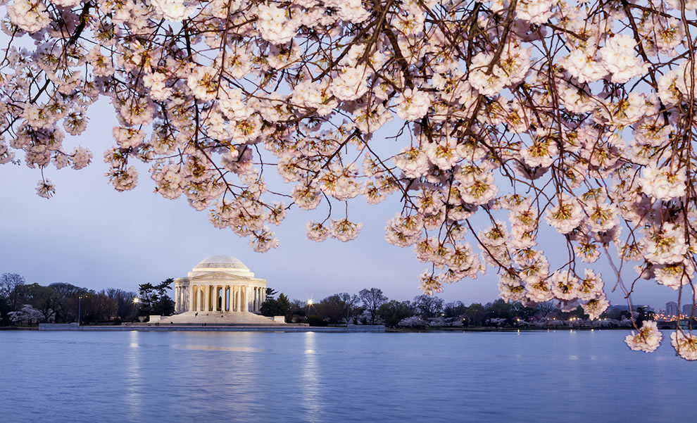 Flights to DC Starting at *$69